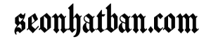 logo-seonhatban