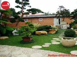 Tiểu cảnh sân vườn đơn giản, tieu canh san vuon don gian | Nonbothanhson.com.vn